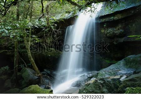 Tumyai waterfall at Phukradueng nationalpark, Located Loei Province, Thailand #529322023