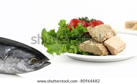 Tuna Fish Salad on Tuna Fish In Front Of A Plate With Salad Stock Photo 80964682
