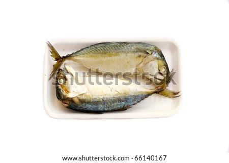 Tuna fish isolated on white - stock photo