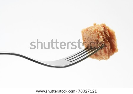 Tuna fish on fork