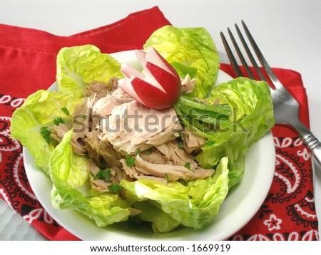 Tuna Fish Salad on Stock Photo   Tuna Fish Salad With Radish Make An Easy To Prepare And