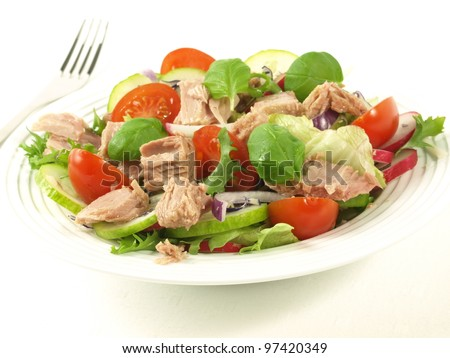 Tuna salad with different vegetables on isolated background.