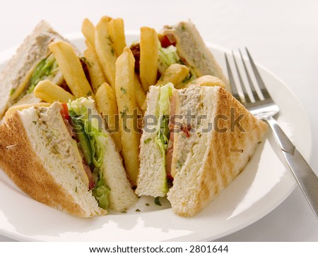 Aninimal Book: Tuna Sandwich Served With French Fries Stock Photo 2801644 ...