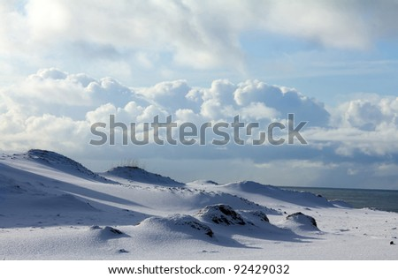 Tundra in winter  ( Commander Islands )