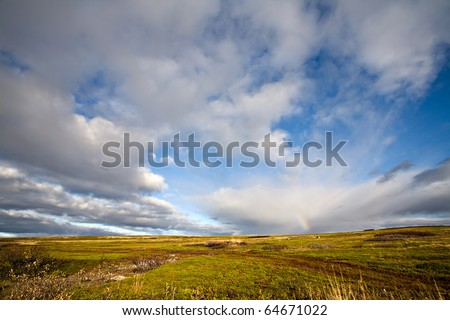 tundra landscape with bright blue and white clouds sky and yellow and green grass ground
