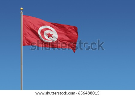 Tunisia flag in front of a clear blue sky #656488015