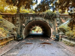 tunnel in the park during autumn