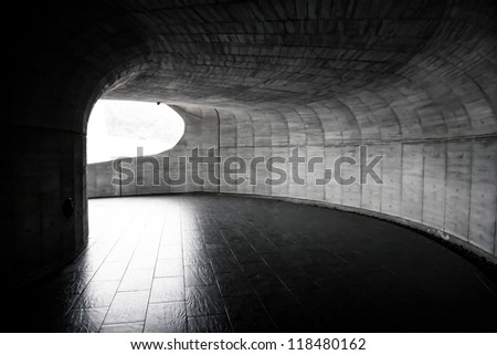 Tunnel to the light