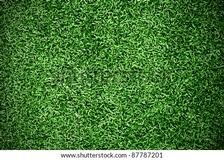 Turf Grass Background