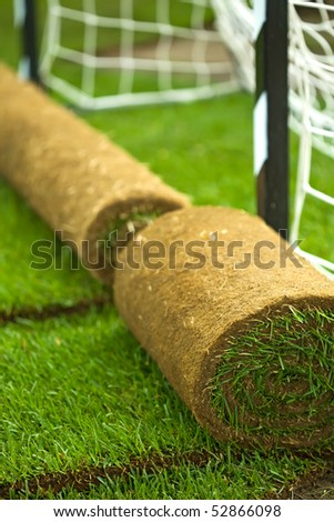 Turf grass rolls on football field - closeup