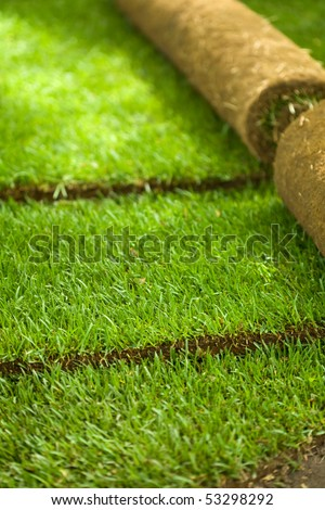 Turf grass rolls partially unrolled revealing a fresh green lawn - shallow depth of field