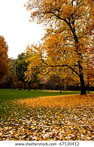Turin - Italy. Park in the center of the city, autumn colors. - stock photo
