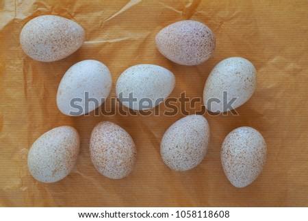 Turkey raw eggs. #1058118608