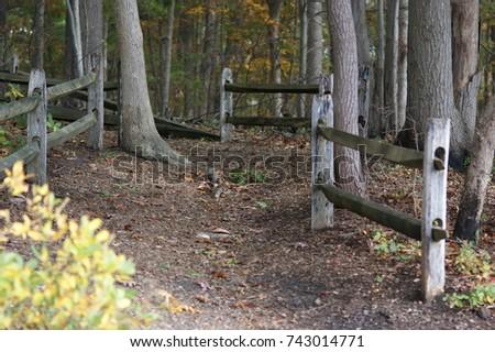 Turkey Swamp Park, Freehold,NJ