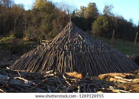 Turkey traditional charcoal production Stok fotoğraf ©