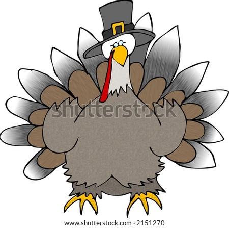 Turkey wearing a Pilgrim hat