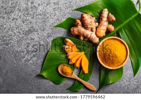 Turmeric powder and fresh turmeric root on grey concrete background with copyspace. Spice, natural coloring, alternative medicine.