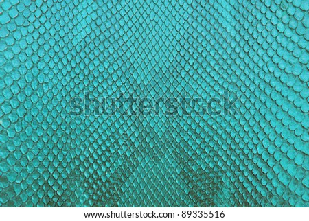 Turqouise python snake skin texture background.