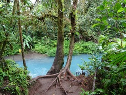 Turquoise blue water of the Rio Celeste located at the heart of the rain forest