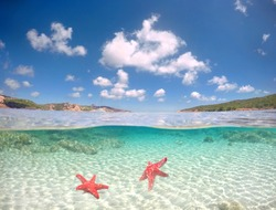 turquoise ocean with underwater view, Tropical sea with island and starfish and fishes, holday and vacation concept