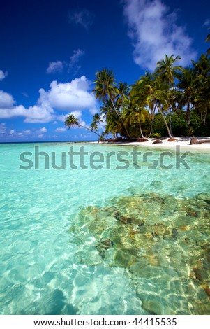 Turquoise tropical water!