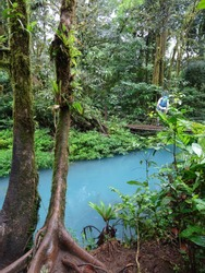 Turquoise waters of the Rio Celeste enclosed by rainforest