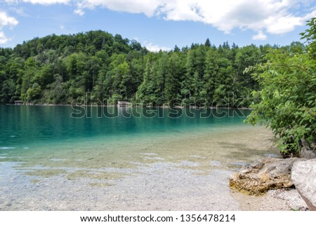 Turquoise waters with a boathouse on the forested shores of the Alpsee in the Southern Bavarian Alps #1356478214