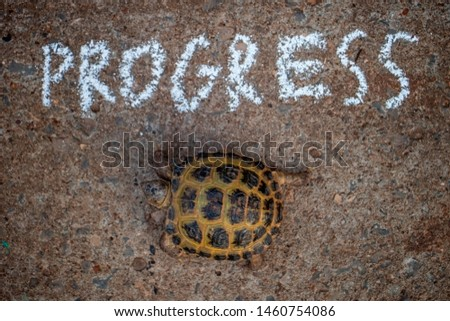 Turtle goes straight on the road with the inscription Progress. Slow progress Concept. #1460754086