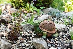 Turtle in the garden. Decorative sculptures. Landscape decor. A stone in the garden. Green garden.