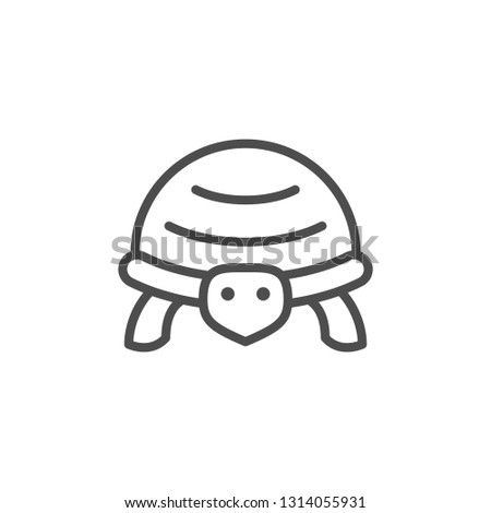 Turtle line icon isolated on white