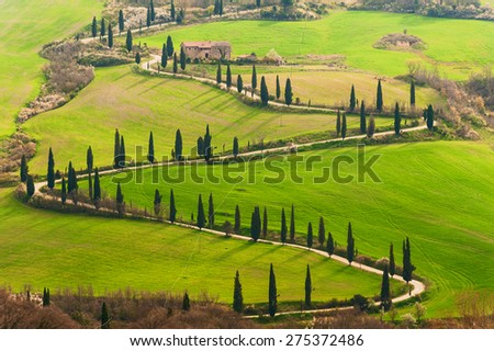 Tuscan way home in the shape of S