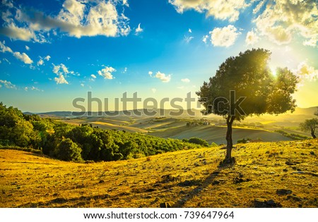 tuscany countryside panoramic...