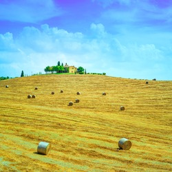 Tuscany, farmland country landscape, on hill top, hay rolls and harvested green fields. Val d Orcia, Italy, Europe.