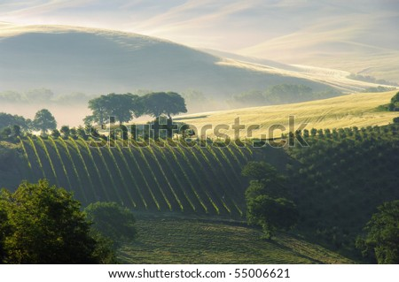 Tuscany hills 1 - stock photo