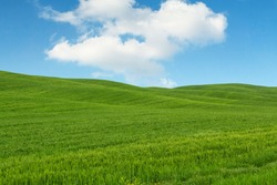 Tuscany landscape, beautiful green hills springtime in Italy,Europe