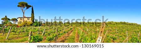 Tuscany landscape panorama with vineyard at sunset, Chianti region, Italy