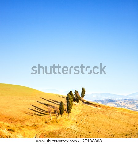 Tuscany, rural landscape. Countryside, cypresses trees, green field, blue sky. Volterra, Italy, Europe.
