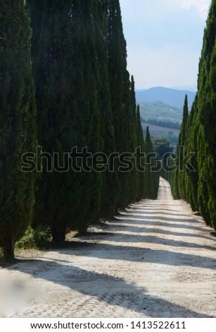 Tuscany where dreams come true #1413522611