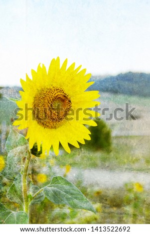 Tuscany where dreams come true #1413522692
