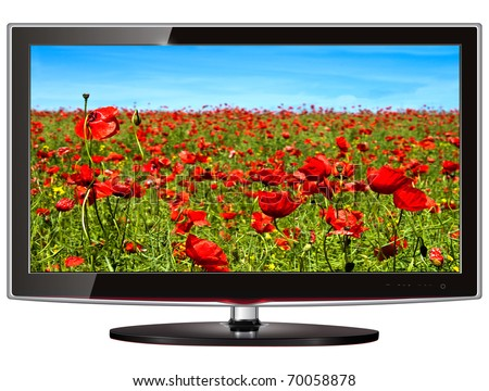 TV flat screen lcd, plasma with wild flowers on screen.