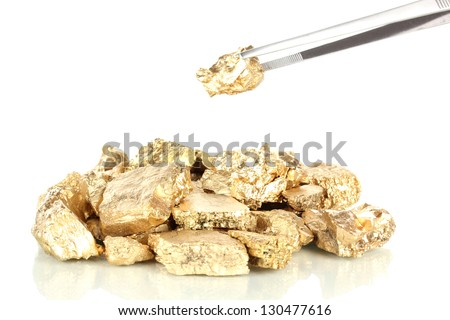 Tweezers holding golden nugget isolated on white