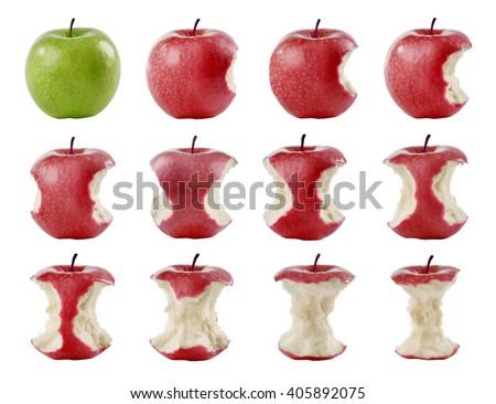 twelve apples in row bitten