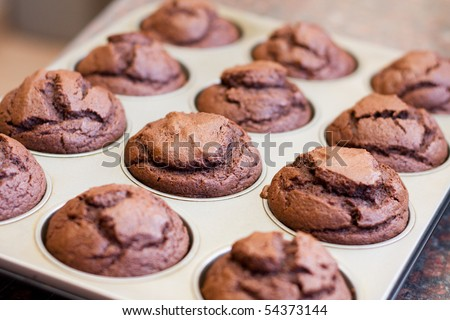 Twelve freshly baked chocolate muffins in muffin tray
