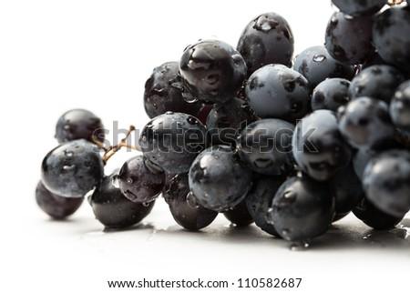 Twig of black grape on white