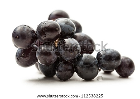 Twig of black grape on white
