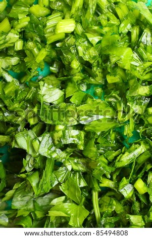 Twig of parsley nature food texture background - stock photo