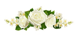 Twigs of Jasmine flowers and roses in a line arrangement isolated on white