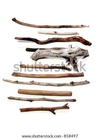 Twigs polished by the sea on white background #858497