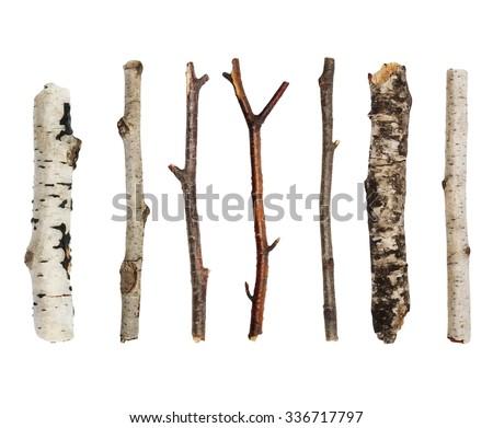 twigs  set macro dry branches...