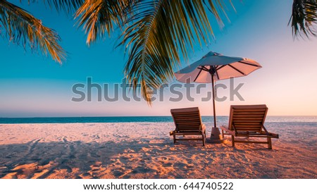 Twilight beach. Summer holiday and vacation concept. Inspirational tropical beach, palm trees and white sand. Moody vintage landscape #644740522